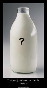 Blanco y en botella - leche
